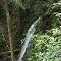 磐田市  雨垂(うたり)の滝