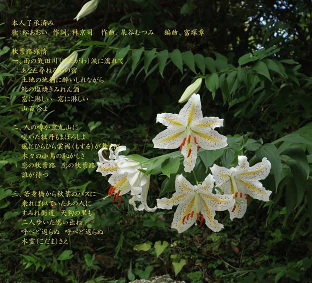 歌:松あおい 『秋葉路旅情』作詞:林京司 作曲:泉谷むつみ 編曲:富塚章