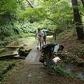 写真: 森林公園 自然いきものかんさつ隊