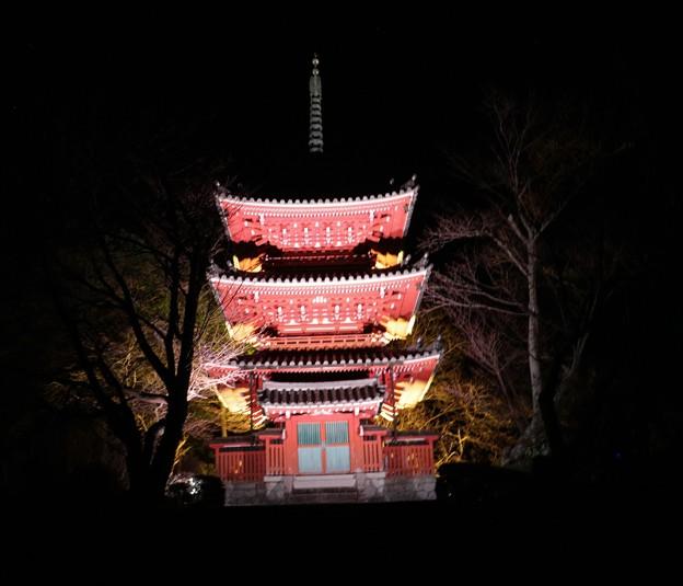 奥山方広寺ライトアップ三重塔
