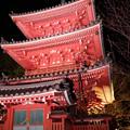 Photos: 奥山方広寺ライトアップ三重塔