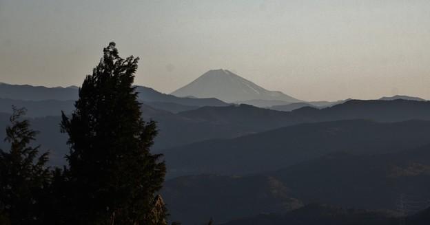 2019年富幕山へ☆トミー今年7回登頂