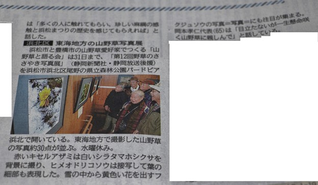 Photos: 森林公園バードピア浜北写真展が1月29日今朝の地元新聞に・・