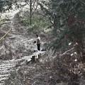 Photos: K)さんは此処で階段を直すと・・