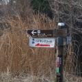 Photos: 名古屋方面から富幕山ハイキングツアーが有るようです。