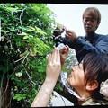 Photos: 以前SBSテレビイブニングeye番組でアケビの花撮影中の小沼みのりさんと鉄崎幹人さん