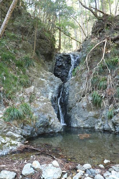 熊(くんま)黒滝