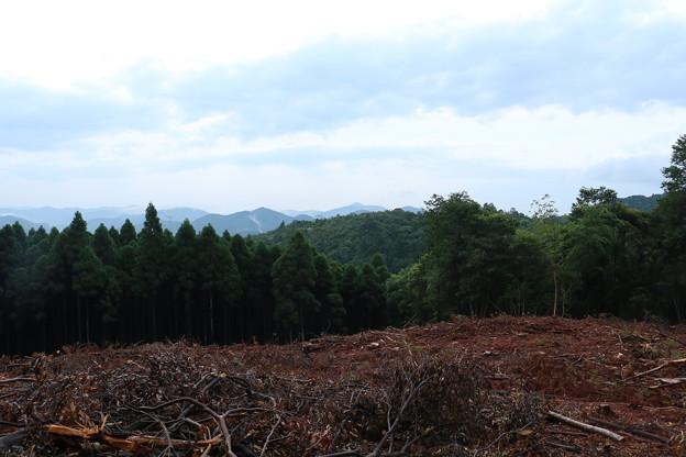 富幕山 伐採箇所から竜ヶ石、山三岳山、方面