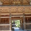 Photos: 菊川市 正林寺(しょうりんじ)山門平成二八年再建