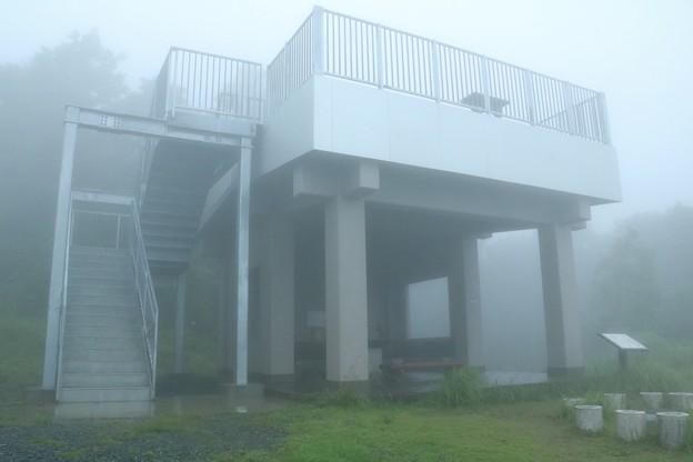 今日の米朝首脳会談~?今日の富幕山展望階段~※