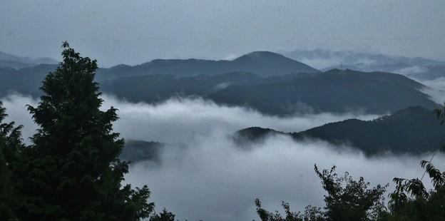 富幕山~雲海の霧山~観音山方面