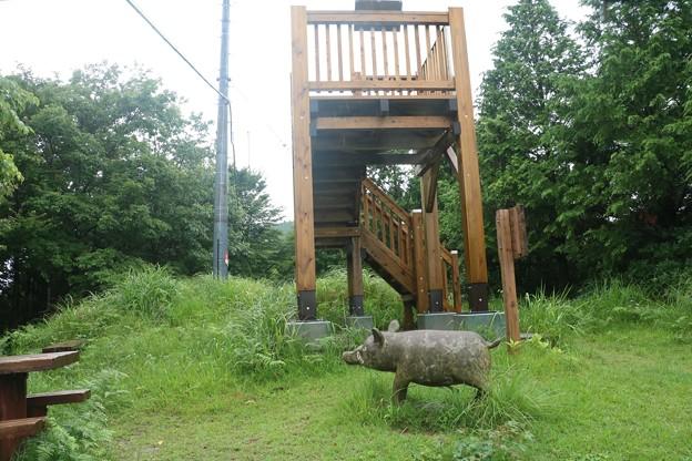富幕山猪の平展望台
