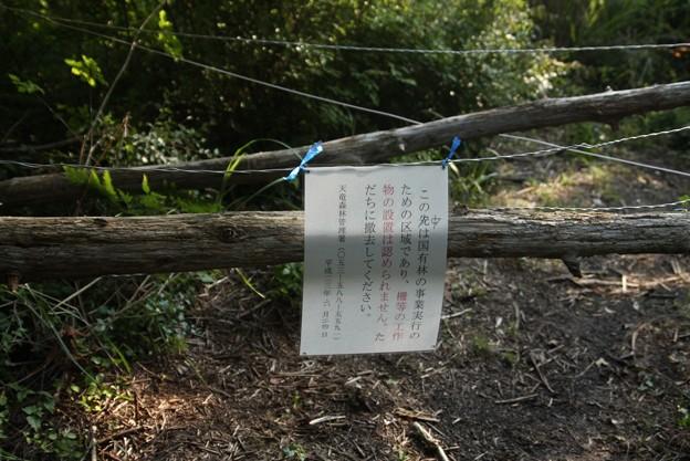 森林管理署より撤去命令でるもそのままでした。