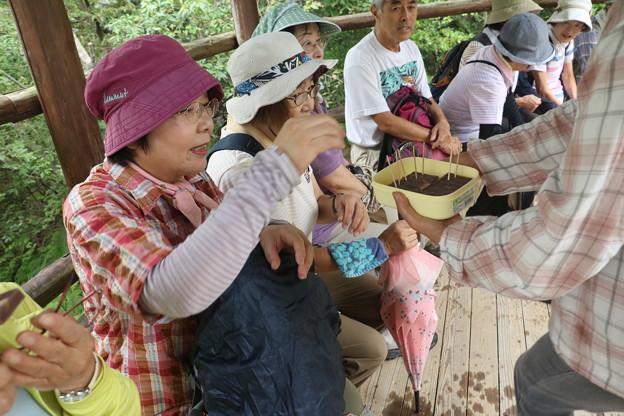 森林公園旧山友とその仲間(K)さん手作り栗蒸し羊羹頂きました。