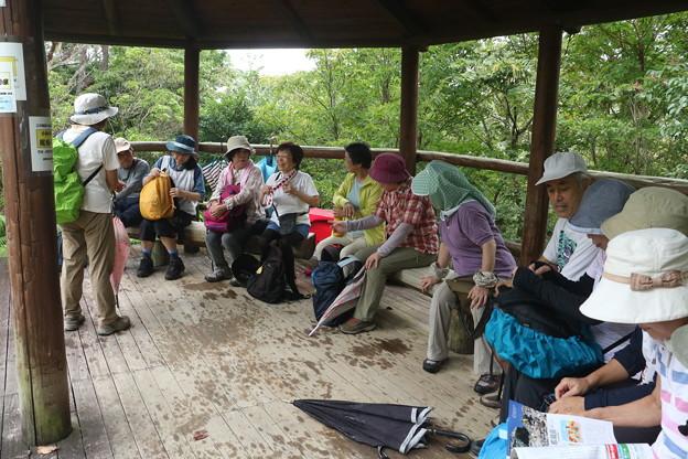 森林公園旧山友とその仲間休憩中