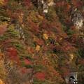 Photos: 鳴子峡