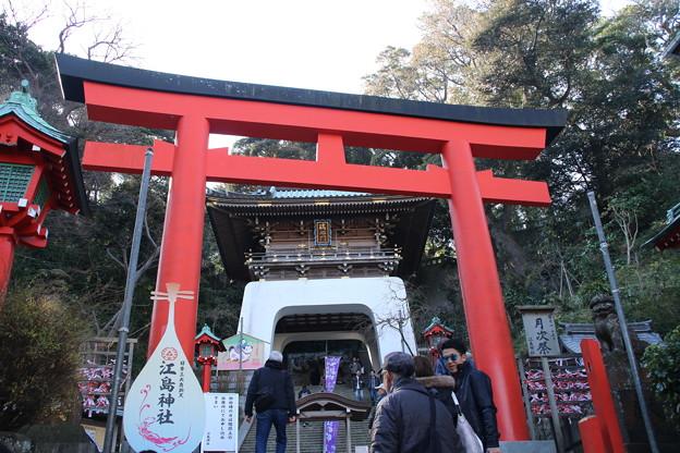 江島神社_江ノ島 D6300