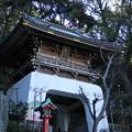 写真: 江島神社 D6369