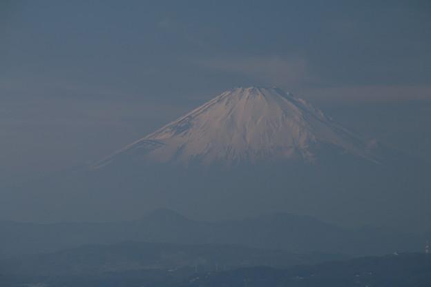 写真: 富士_江ノ島 D6351