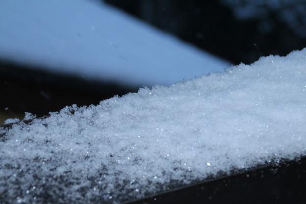 写真: 雪景色_守谷 D6389