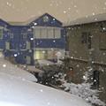 写真: 降り続く雪 D6401