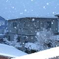 写真: 降り続く雪 D6392