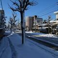雪景色_守谷 D6423
