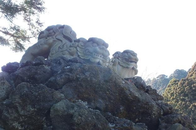 獅子_神社 F1704