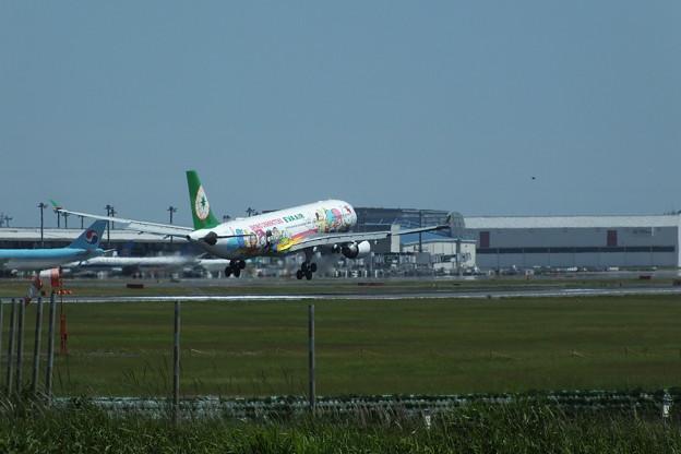 飛行機_成田 F2390