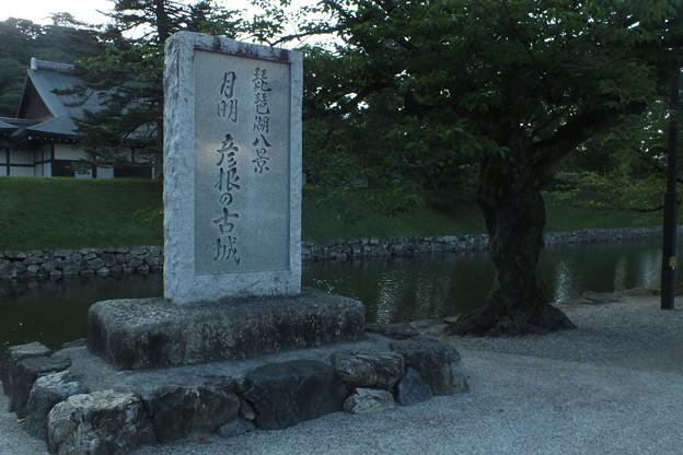 彦根城_滋賀 F2792