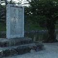 写真: 彦根城_滋賀 F2792