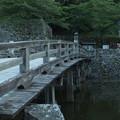 写真: 彦根城_滋賀 F2794