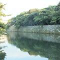 写真: 彦根城_滋賀 F2798
