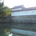 写真: 彦根城_滋賀 F2799