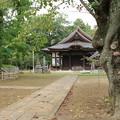 弘経寺 D8253