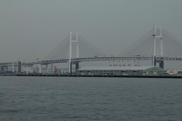 ベイブリッジ_横浜 D8637
