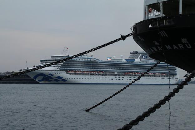 客船_横浜 D8698