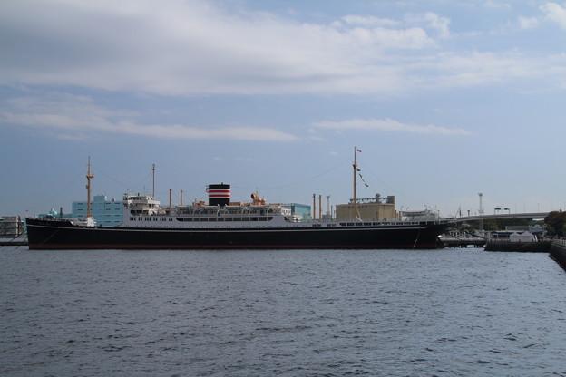 氷川丸_横浜 D8788