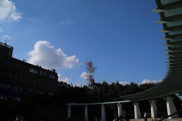 港の見える丘_横浜 D8873
