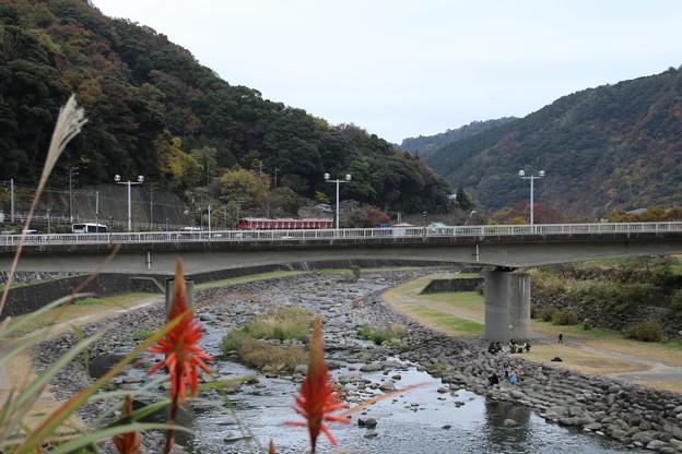 早川_箱根 D9125