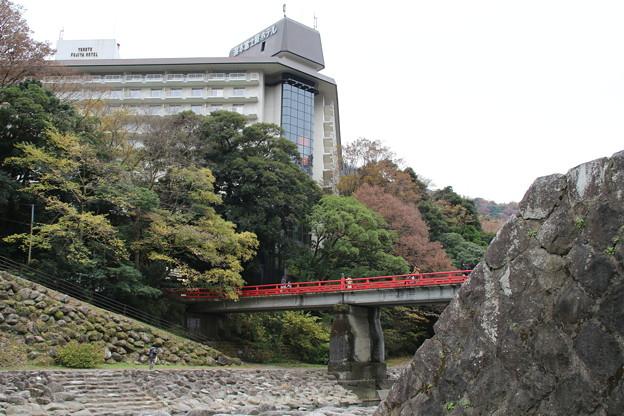 富士屋ホテル_箱根 D9129