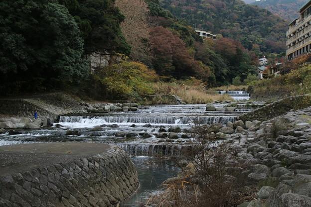早川_箱根 D9130