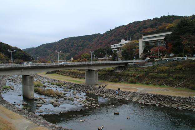 早川_箱根 D9136