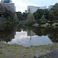 Photos: 日比谷公園_東京 D9301