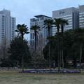 Photos: 日比谷公園_東京 D9306