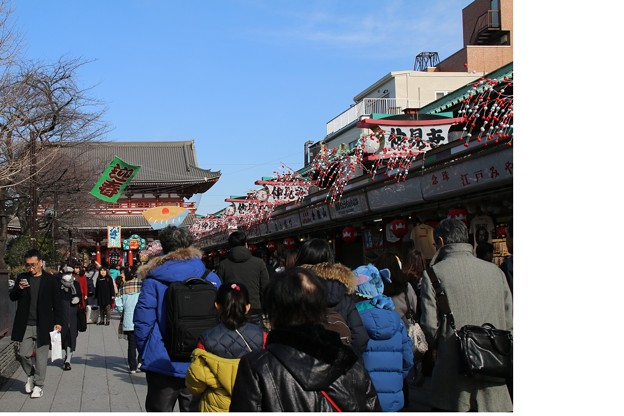 Photos: 新年_浅草 D9340-m