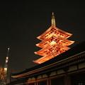 Photos: 夜景_浅草 D9360
