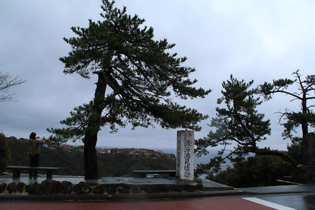 見晴台_伊豆大島 D0052