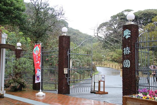 大島公園 D0072