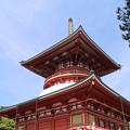 Photos: 新勝寺_成田 D1272